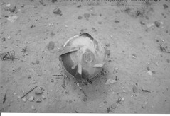Unexploded Cluster Bomb