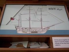 HMS Beagle Puzzle