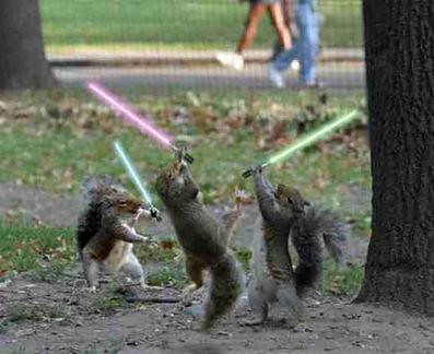 Squirrels know how to use Light Sabers....