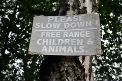 Slow down - the children are free!