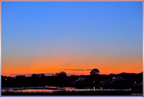 Northeast Colors Sail Pink Seas - IMRAN™