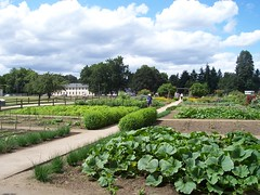 Kitchen garden at Fort Vancouver.