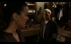 Ziva and Gibbs