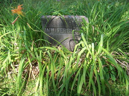 William Ferguson tombstone in a bed of grasses and flowers
