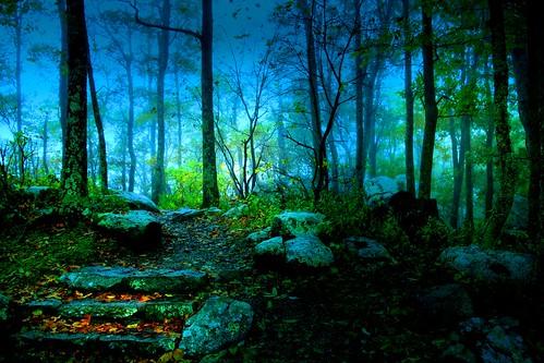 Dawn of Mist