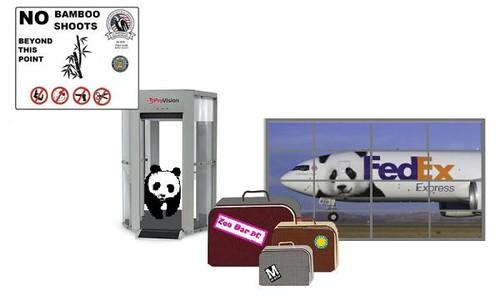Panda Passenger Now Boarding