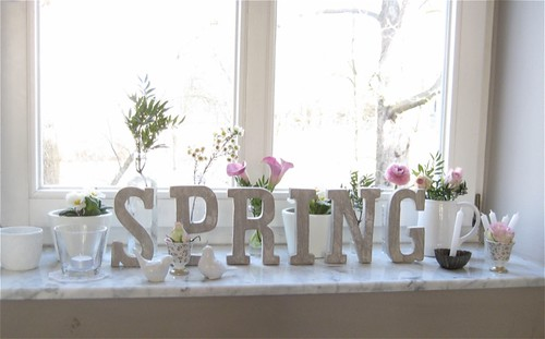 Is Spring there, yet?