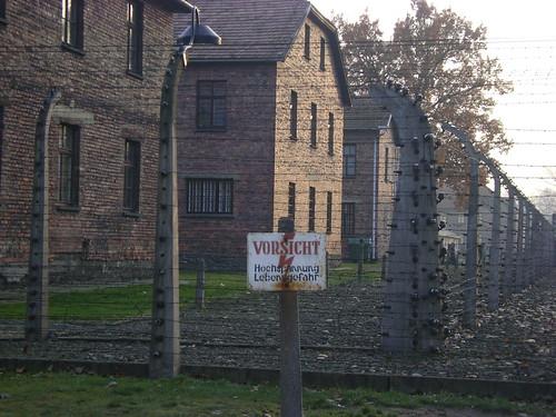 Barbed wire at Muzeum Aushwitz
