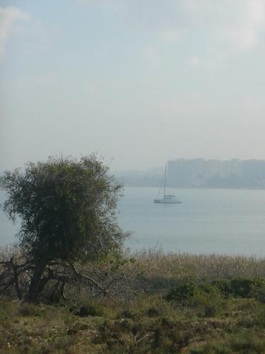 La sabina, el catamarán y el mar menor