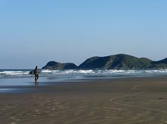 The Surfer - Ilha do Mel, Brazil