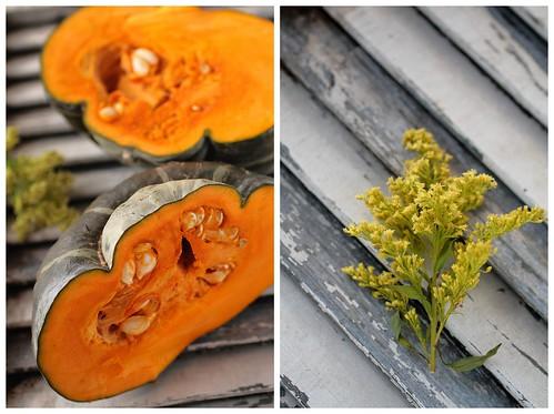 Pumpkin and Goldenrod