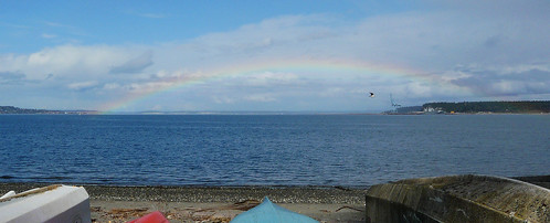rainbow, with gull and warship
