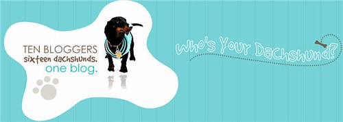Who's Your Dachshund?
