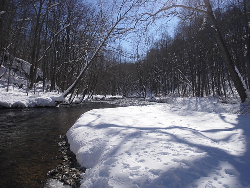 Downstream in Winter