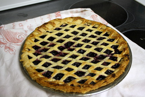 blueberry pie (baked) 1