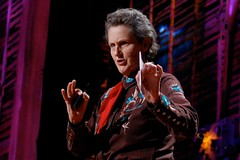 TED 2010 Temple Grandin