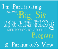 Big Sis, Little Blog Program