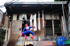 spiderman 2009