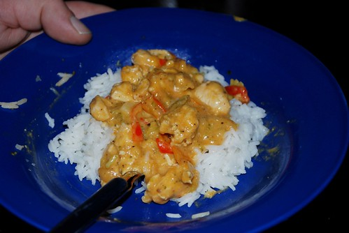 Chickencurry-Rice_02