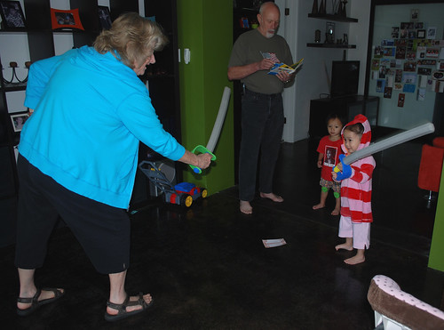 45/365 sword fight