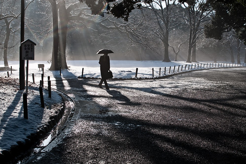Dawn snow at Tokyo