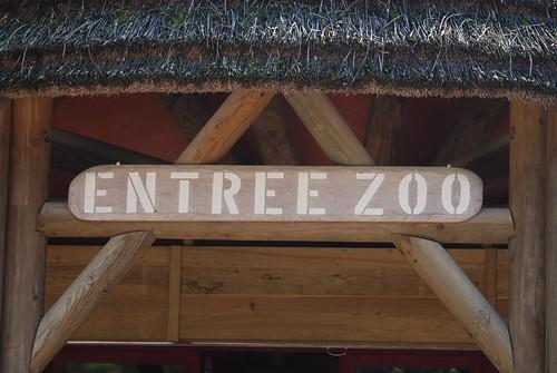 Im Zoo von Doué-la-Fontaine