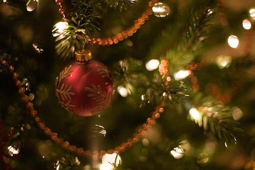 Tree 3 112709