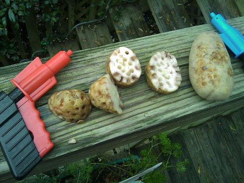 Potato Guns and Ammo