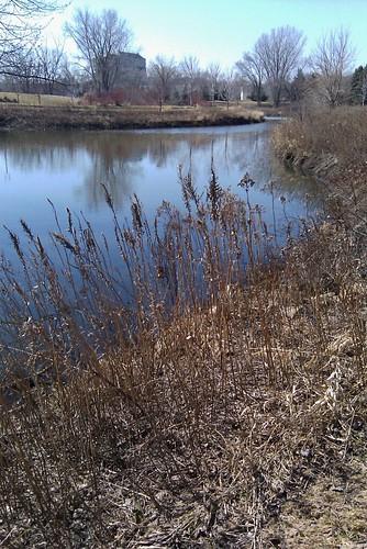 Pre-Spring at Norman Pointe
