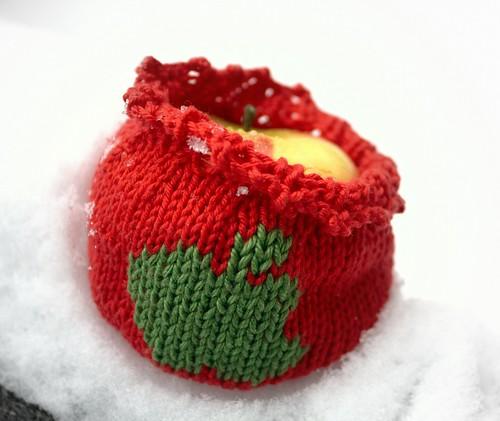 apple cozy 2