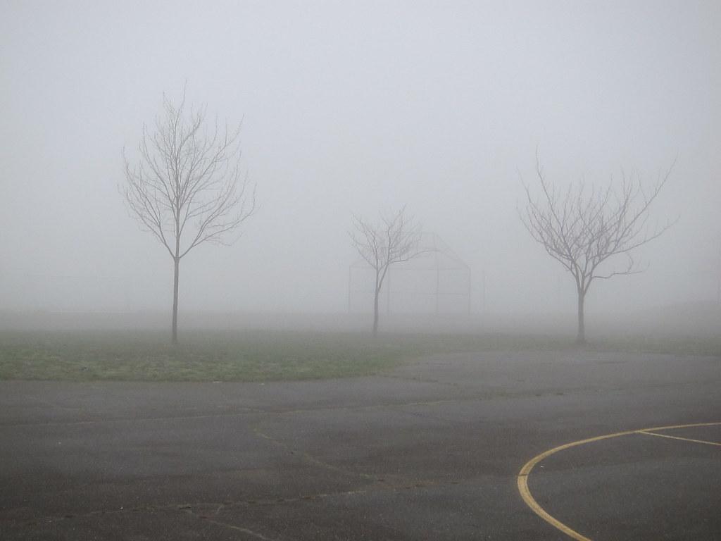 Spooky schoolyard