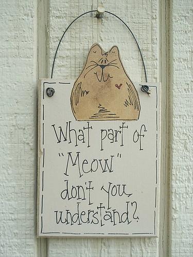 Meow Understand