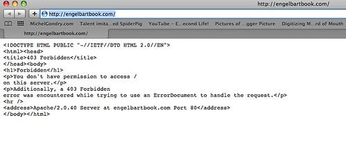 Engelbart Hypothesis Controversy