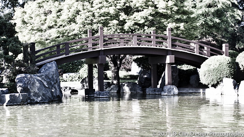 Japanese Garden Pt2 35mm Summicron-M ASPH by d.clin.design