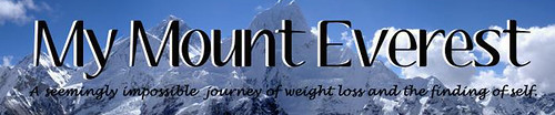 cropped-everestbanner