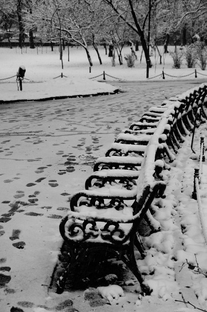 Curves in winter