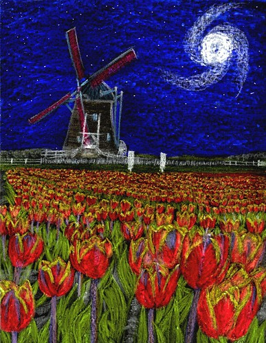 Midnight Tulips