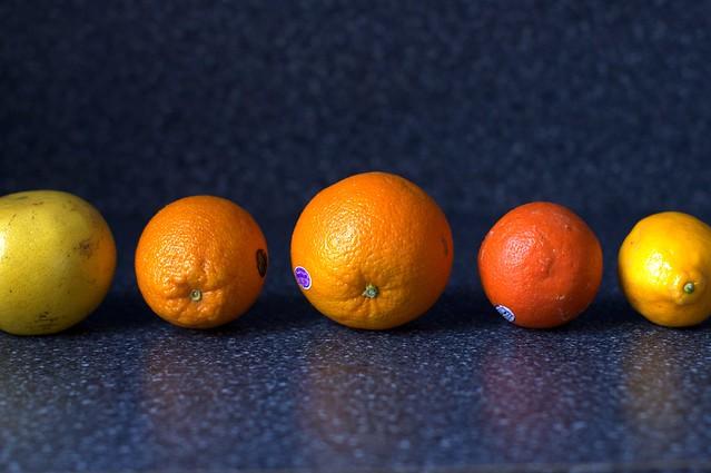the citrus lineup