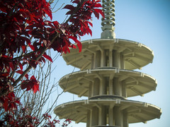 Springtime finds the Peace Pagoda-Japantown-San Francisco