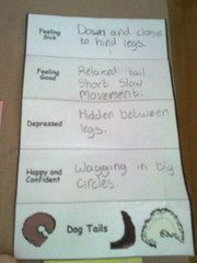 Poppy's 'Puppies' lapbook - meanings of tails