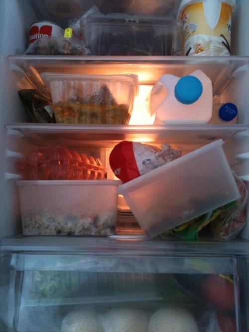 Next day fridge after Slug Power party 2010