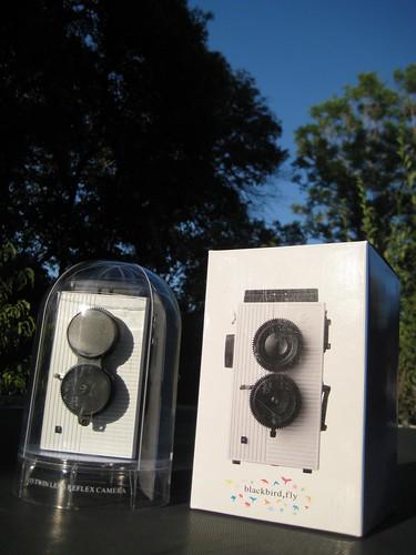 blackbird, fly camera, pt.