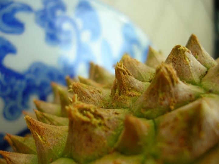 Thorns!!