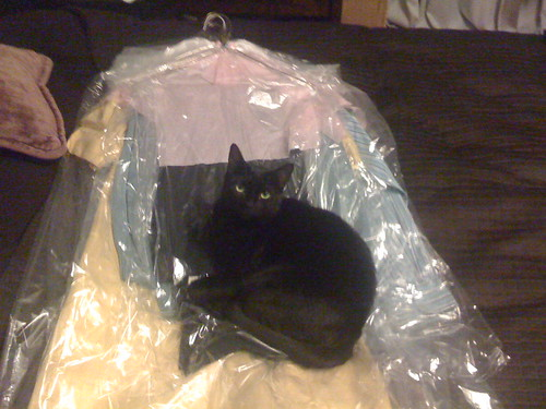 Jezebel on dry cleaning