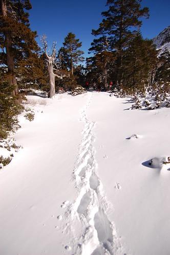 Snow mountian - 雪山