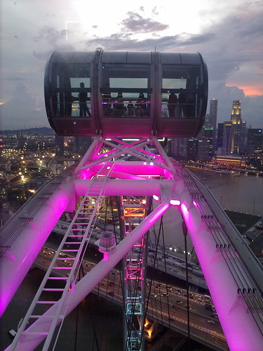 Singapore Flyer - at the top #1