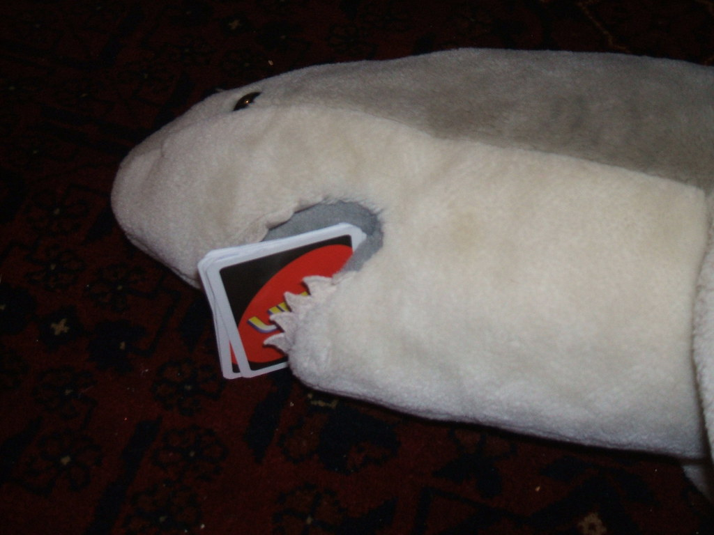 Great white shark playing Uno