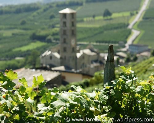 Schweizer Weine 0_2009 09 08_2503