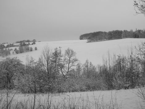 snow6_blog