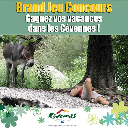 Grand Jeu Concours Gagnez vos vacances dans les Cévennes ! par Modestine l'ânesse des Cévennes